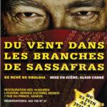"""Affiche de la pièce """"Du vent dans les branches de sassafras"""" mis en scène par Alain Carré dans le parc de la mairie de Vandoeuvres."""
